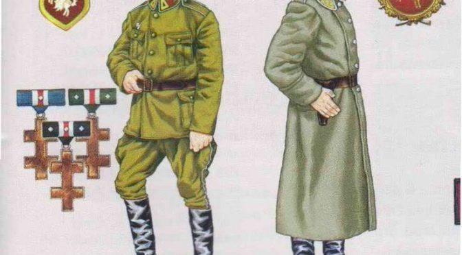 Работа па арганізацыі беларускага войска – лістапад 1918 г.